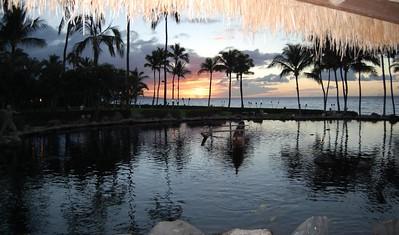 Hawaii Christmas 2007