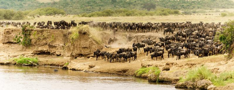 Kenya 2015-05695.jpg