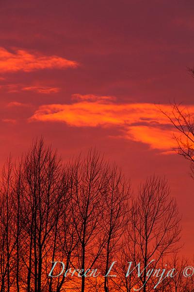 Sunset sky_0129.jpg