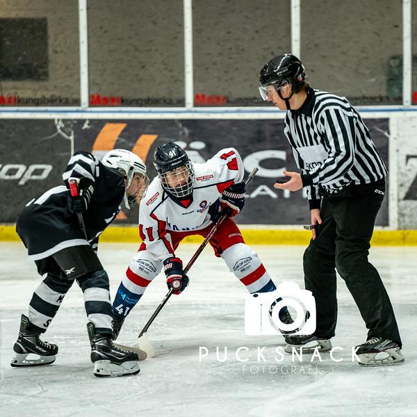 Göteborg Ishockey Cup 2020: TPS HC - Hanhals Kings