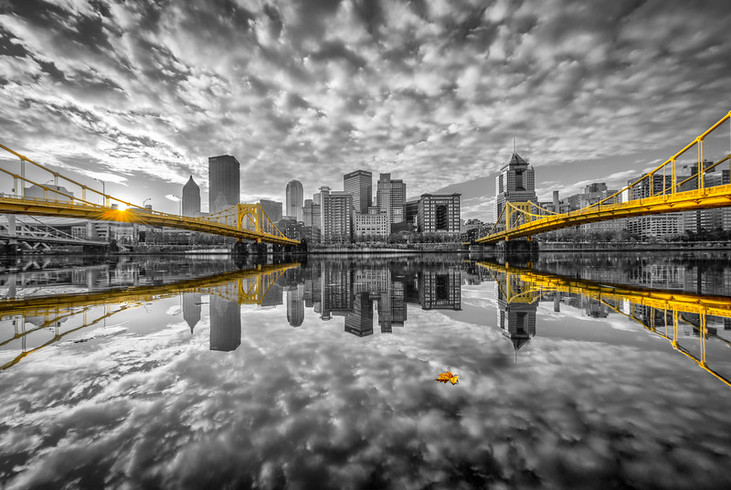 """""""The Lonely Leaf (S/C)"""" - Pittsburgh, North Shore   Recommended Print sizes*:  4x6  