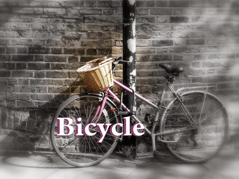 Bike Cover2.jpg