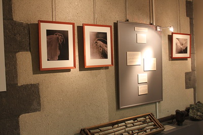 Exhibitions/Publications/Awards