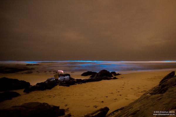 28Jan2014 - Maitlands more red tide