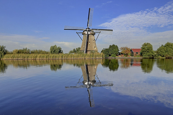 Kinderdijk Windmills & Bike Ride