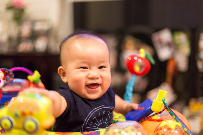 oliver_playing_20150805-6.jpg