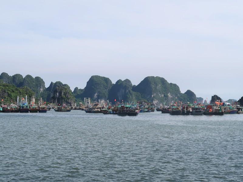IMG_3566-halong-fishing-boats.jpg