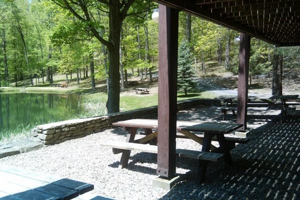 Pine Lodge - 5.jpg