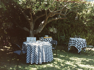 Petry garden party