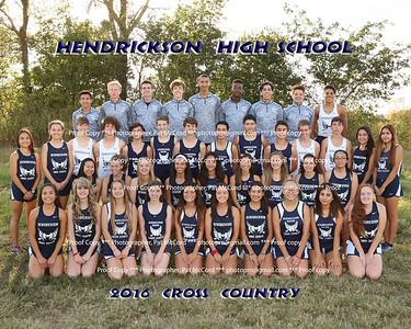 Hawk 2017 Cross Country