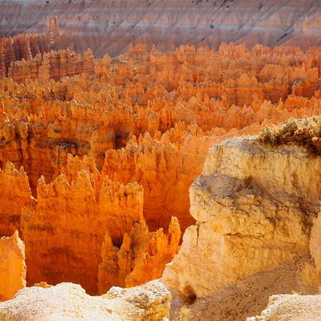 National Parks - Federal Lands