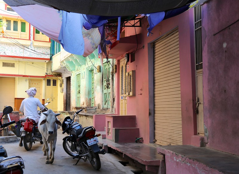 Colors in the village of Deogarh