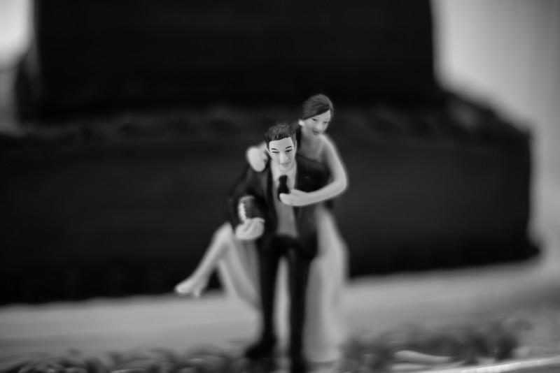 0819_Josh+Lindsey_WeddingBW.jpg