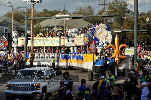 2014 Mardi Gras Pictures