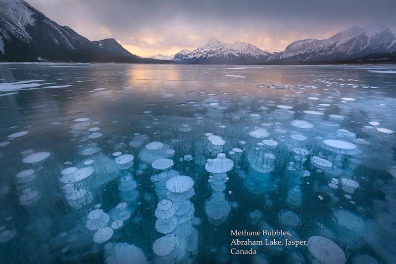 Methane Bubbles_Abraham Lake 1jpg034.jpg