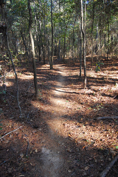 About 2M from the start < Conner Creek.
