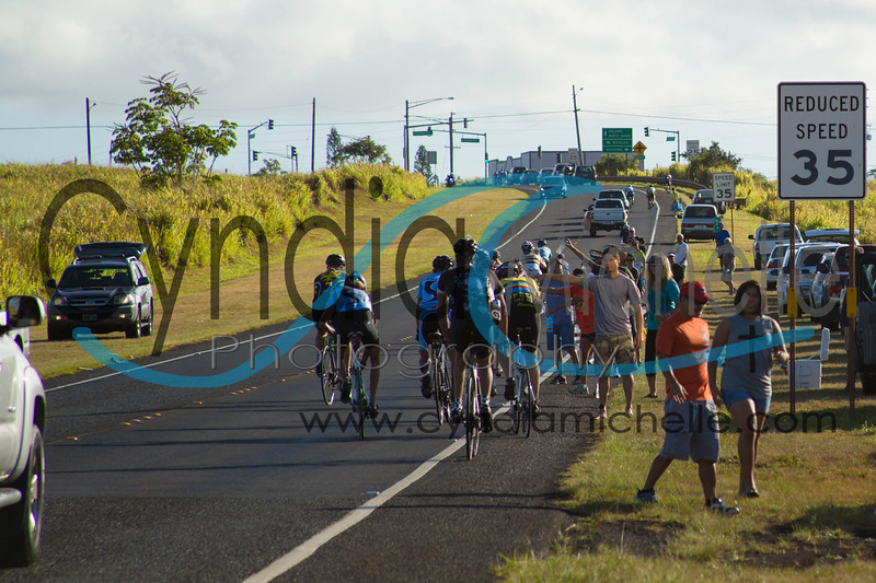 Cyclists riding through Dole pineapple fields during the Dick Evans Memorial Bike Race on September 1, 2013.