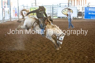 Saddle Brocs
