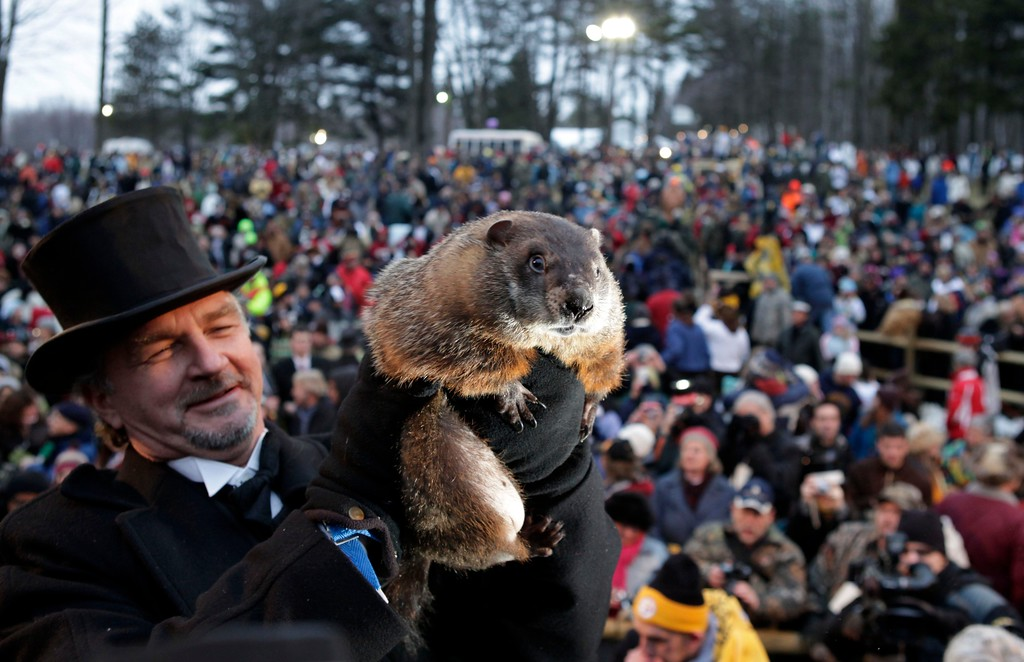 . FILE - In this Feb. 2, 2009  file photo, John Griffiths, a handler of the weather-predicting groundhog Punxsutawney Phil, holds Phil in the air after removing him from his stump at Gobbler\'s Knob on Groundhog Day, in Punxsutawney, Pa. The state\'s tourism department says Phil will text his weather prediction to those who sign up to have texts sent to their mobile phones. (AP Photo/Carolyn Kaster, File)