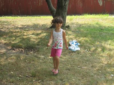 2010 Summer