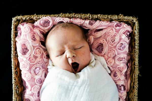 Emma Sydney {Newborn}