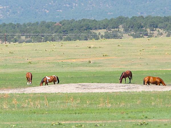 2013 Philmont Scout Ranch