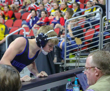 State wrestling 2019