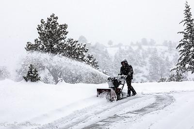 Winter 2019   Pine  AZ