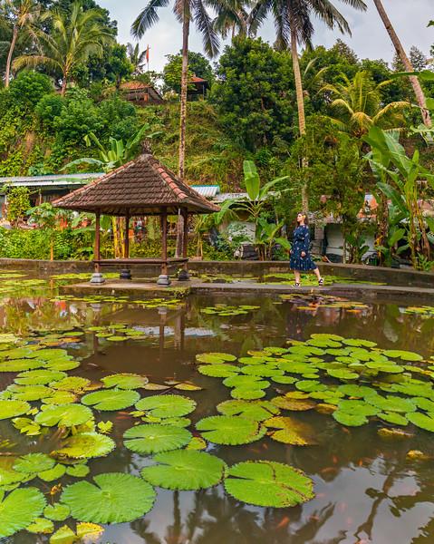 Bali (80).jpg