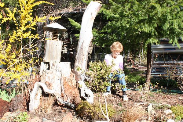 3.28-4.6.2011 Oregon Three