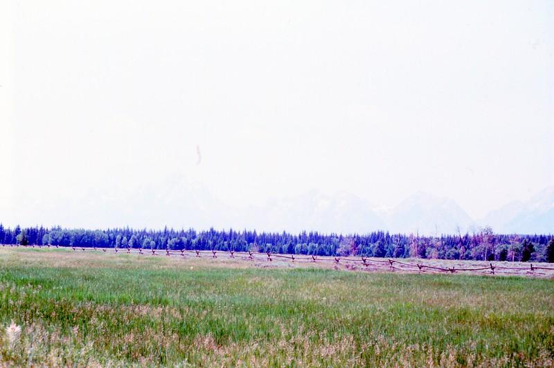 1985-07-07 474.jpg