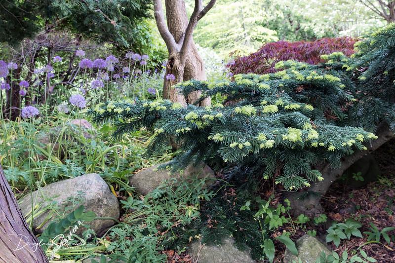 Garden Society Grounds