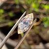 2.86ct Antique Marquise Cut Diamond, GIA N VS1 8