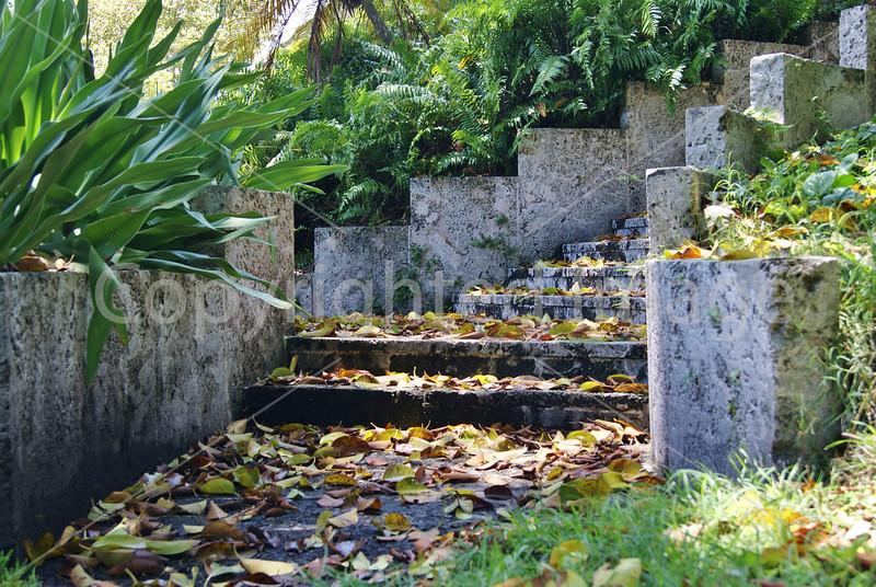 #52 Bonnet house stone stairway.JPG
