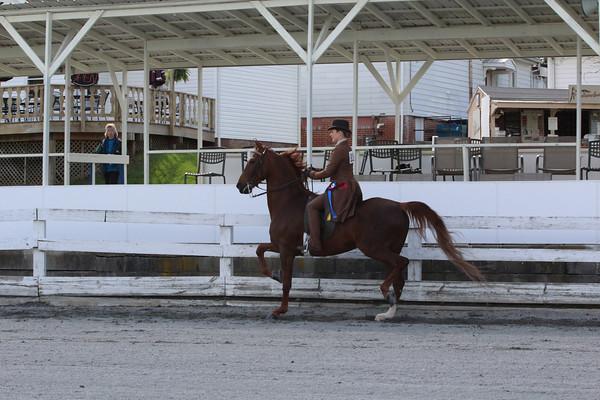 125 Open Adult Equitation Championship