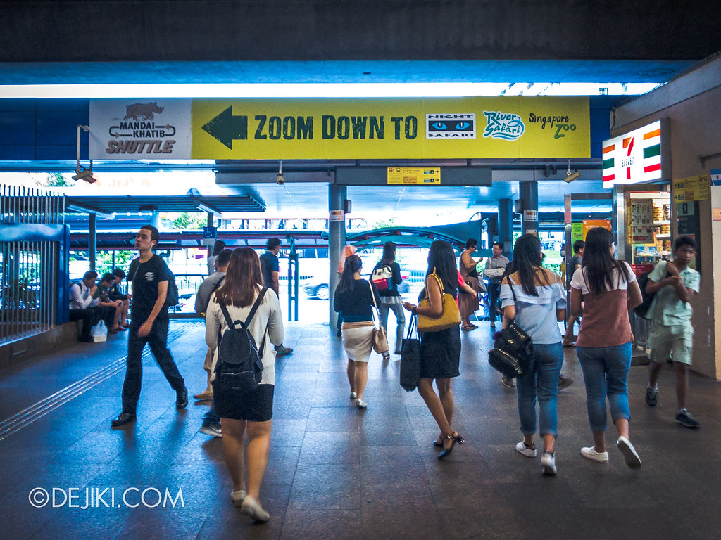 Singapore Zoo Rainforest Lumina - Mandai Khatib Shuttle