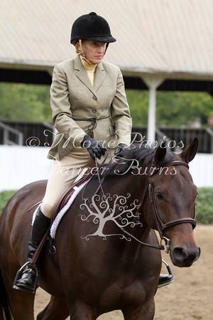 SC/B/V Horse Pleasure Adult