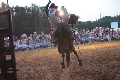 Bareback And Saddle Bronce