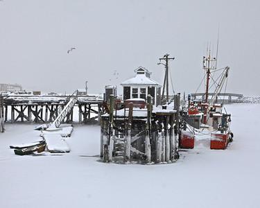 Frozen Plymouth Harbor  February 2015