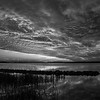 SunsetBackBayNationalWildlifeRefuge-086_BW