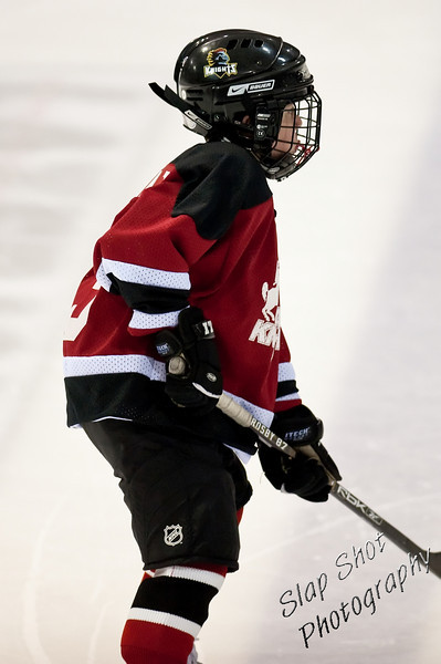 Mite Select State Finals Mar. 7th-8th