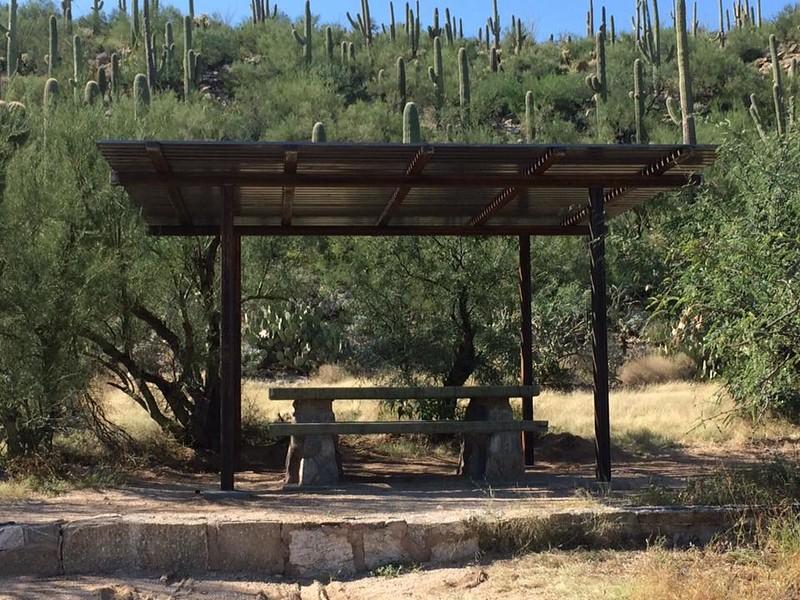 Custom Ramada at Sabino Canyon