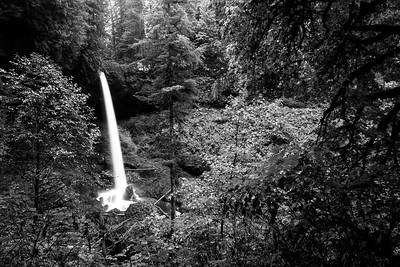 Silver Falls State Park 2