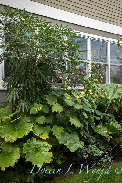 Lisa Bauer - designer's garden_1292.jpg