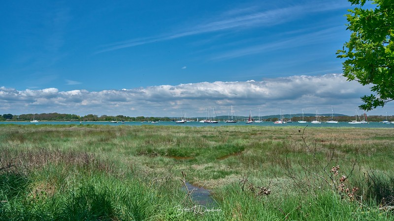 Chichester Harbour-8353 - 1-23 pm.jpg