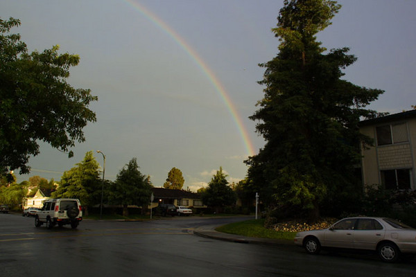 Rainbows and Vienna in Mountain View