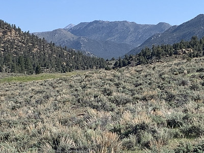 PCT: Kennedy Meadows South To Kern