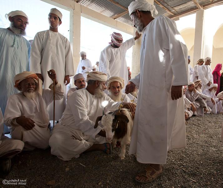Traditional market (122)- Oman.jpg