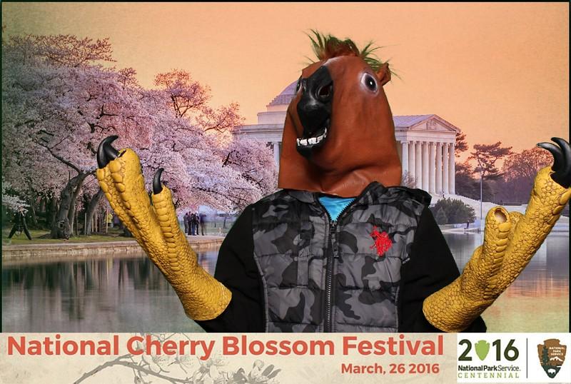 Boothie-NPS-CherryBlossom- (386).jpg