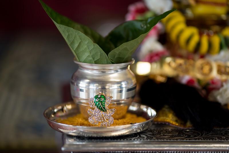 Erin_Harsha_Hindu_Wedding-29.jpg